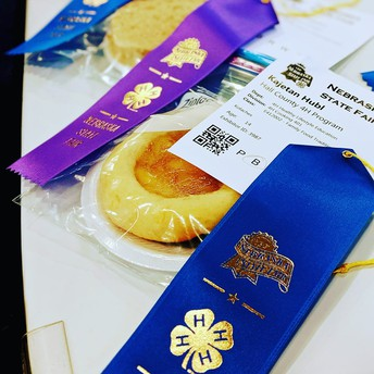 State Fair Results