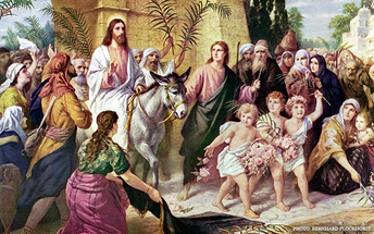 Sunday 5 April 2020 - Palm Sunday
