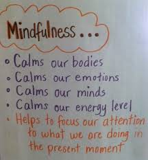 5 Strategies for Building Mindfulness in our Students