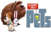 PTA Family Movie Night