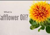 CLA Safflower Oil Side Effects Concerns: