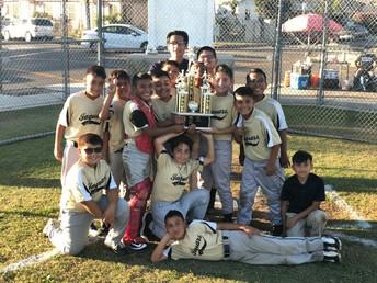 Campeones del béisbol!