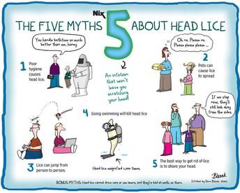 5 mitos sobre los piojos