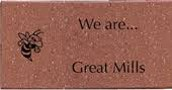 Hornet Strong Brick Project
