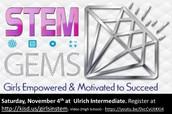 STEM GEMS