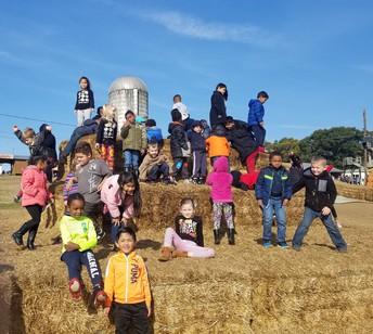 Students climb the straw pyramid!