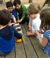 Earth day activities with all of lower school.