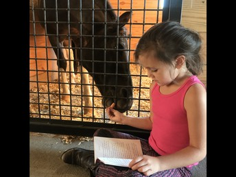 Ava Brooke Reads to Dreamy!
