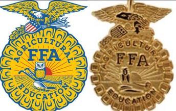 California State FFA Degree