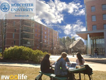 Welcome to #woolife!