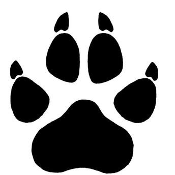Athletics - Go Bobcats!