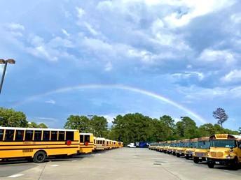 Bus Transportation Updates
