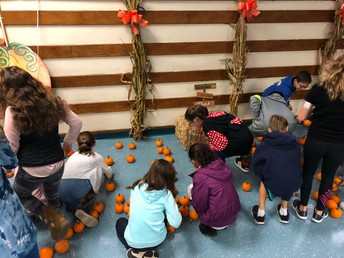 Choosing the right pumpkin