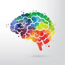 Image of a multi-colored brain