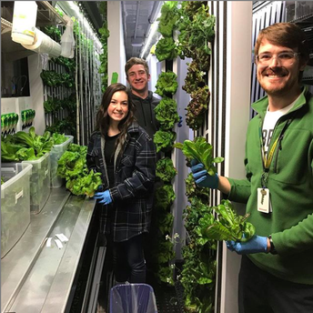 Tour a hydroponic greenhouse and learn about electric cars and more at the Earth Day Extravaganza!  MVHS April 24th