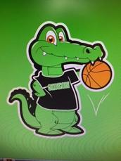 Basketball Season is Back!