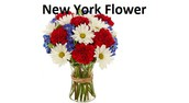 New Possibilities In Tracking Down Fundamental Elements For New York Flower