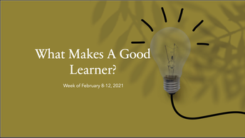 Lesson: What Makes A Good Learner?