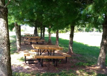HSA Has Replaced the Picnic Tables