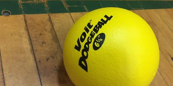 PTO  -  Boosterthon Dodgeball Challenge