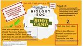 Biology EOC Boot Camp