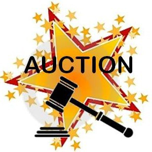First Auction meeting TOMORROW night!