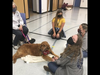 K-9 Therapy Dogs at South Park