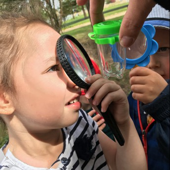 Pathways inspecting bugs