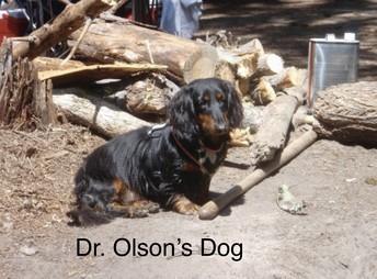 Dr. Olson, 3rd Grade Teacher