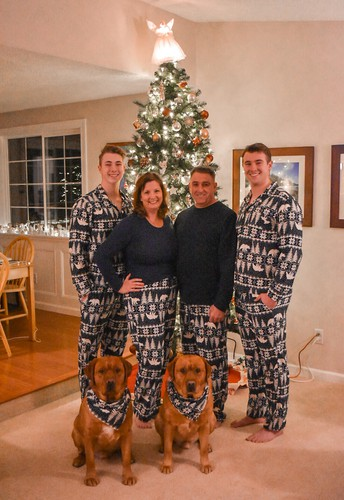 picture of White family & their 2 dogs in front of lit tree