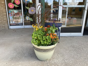 Thank you Naquag PTO for the lovely front entry flowers!
