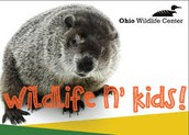 Ohio Wildlife Center:                      Up Close and Personal