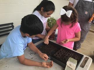 Taking learning outdoors (School Garden)