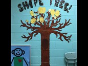 Shape Tree!