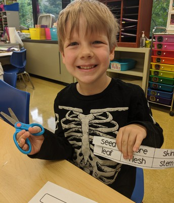 Kindergarten Lion Learning Science and Wearing Science!
