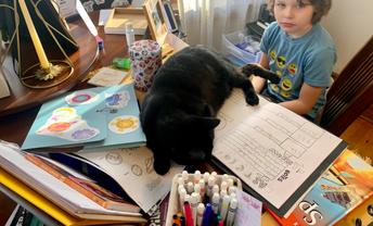 Sharing His Desk