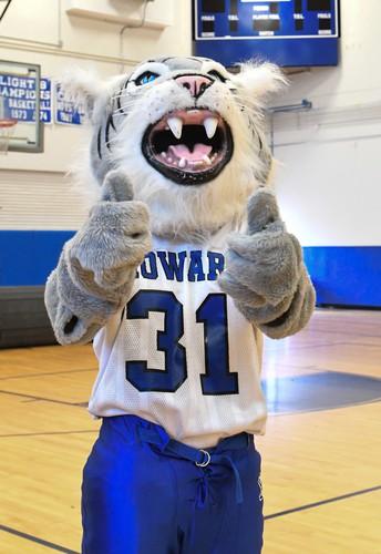 Welcome to the Wildcat Scoop!