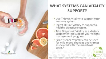 Body System Support