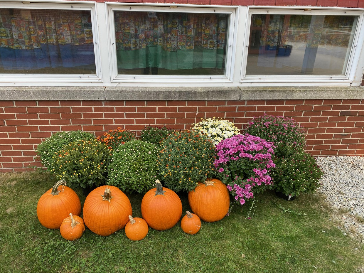 photo of donated pumpkins and mums
