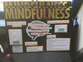 Research Projects @ Ann Richards School