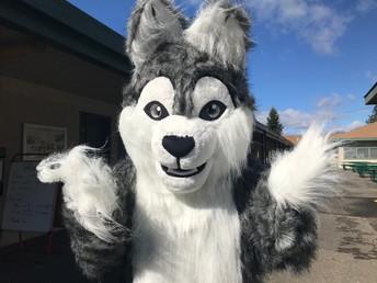Wolfie!