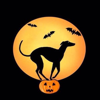 A picture of a greyhound carved into a pumpkin