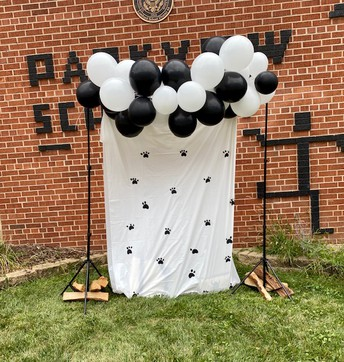 Panther Photo Wall