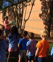 Releasing our butterflies!!
