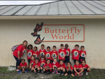 Kindergarten Goes to Butterly World