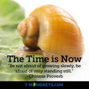 Growth Mindsets - The 7 Mindsets - The Time Is NOW