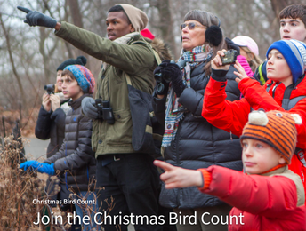 Audobon Society Christmas Bird Count