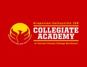 Collegiate Academy at TCC Northeast