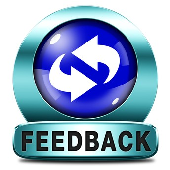 Giving Feedback to Students in an Online Learning Environment