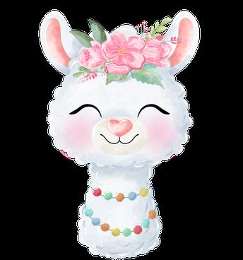 Asbury Alpaca Smile